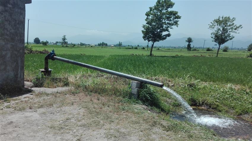 استفاده از تمامی ظرفیت ها جهت تأمین آب کشاورزی شالیزارهای تالش